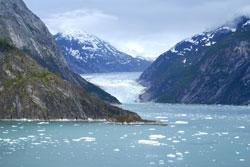 Endicott Arm Fjord Alaska