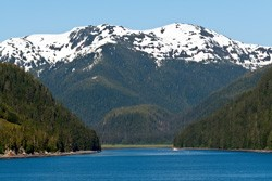 Tongass National Rain Forest